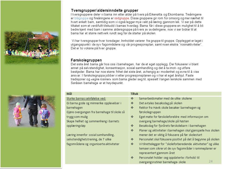 Tversgrupper/ aldersinndelte grupper I tversgruppene deler vi barna inn etter alder på tvers på Eikenøtta og Ekornbarna.