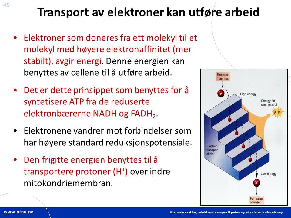 49 Elektroner som doneres fra ett molekyl til et molekyl med høyere elektronaffinitet (mer stabilt), avgir energi.