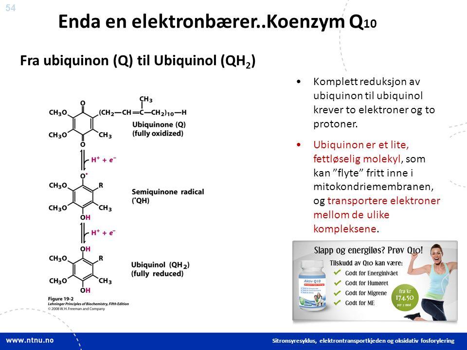 54 Komplett reduksjon av ubiquinon til ubiquinol krever to elektroner og to protoner.