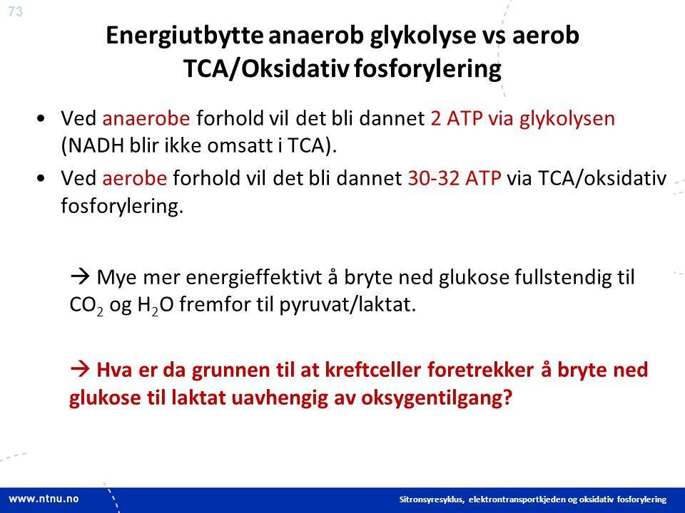 73 Energiutbytte anaerob glykolyse vs aerob TCA/Oksidativ fosforylering Ved anaerobe forhold vil det bli dannet 2 ATP via glykolysen (NADH blir ikke omsatt i TCA).