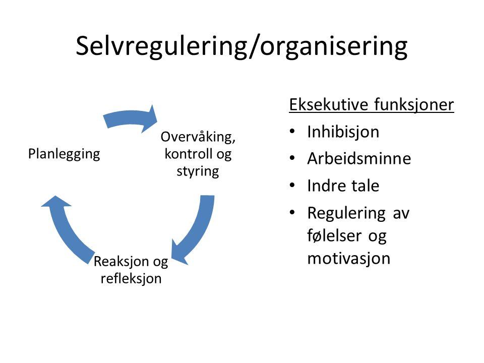 Selvregulering/organisering Overvåking, kontroll og styring Reaksjon og refleksjon Planlegging Eksekutive funksjoner Inhibisjon Arbeidsminne Indre tale Regulering av følelser og motivasjon
