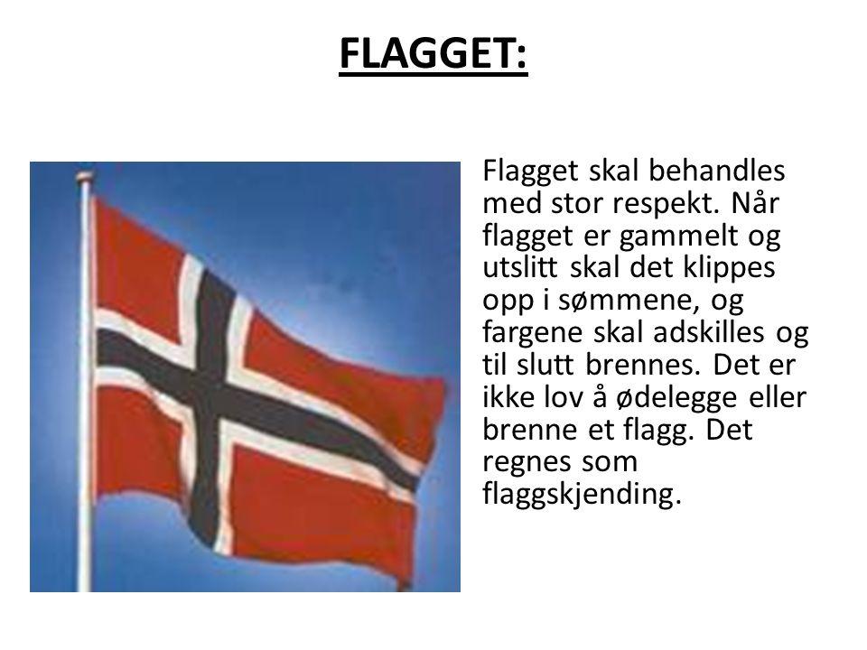 FLAGGET: Flagget skal behandles med stor respekt.