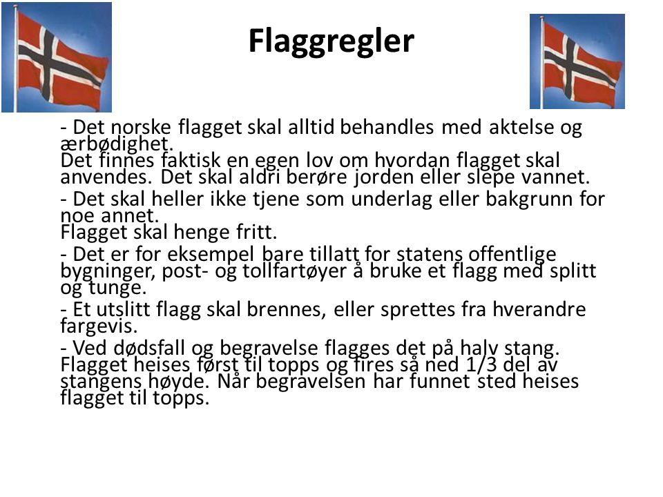 Flaggregler - Det norske flagget skal alltid behandles med aktelse og ærbødighet.