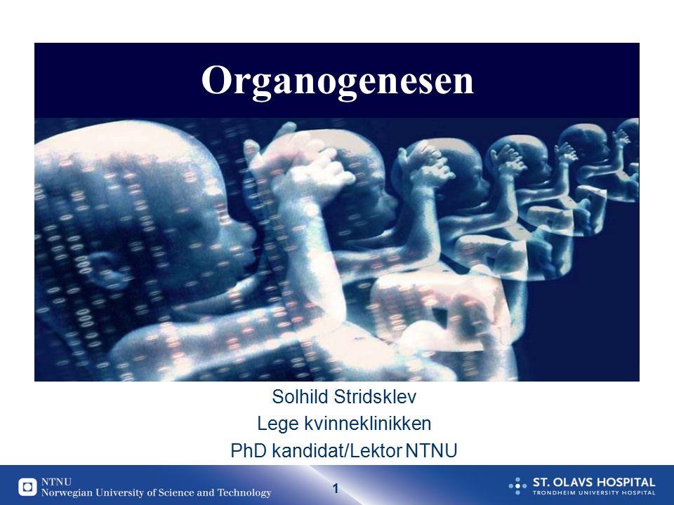 1 Solhild Stridsklev Lege kvinneklinikken PhD kandidat/Lektor NTNU Organogenesen