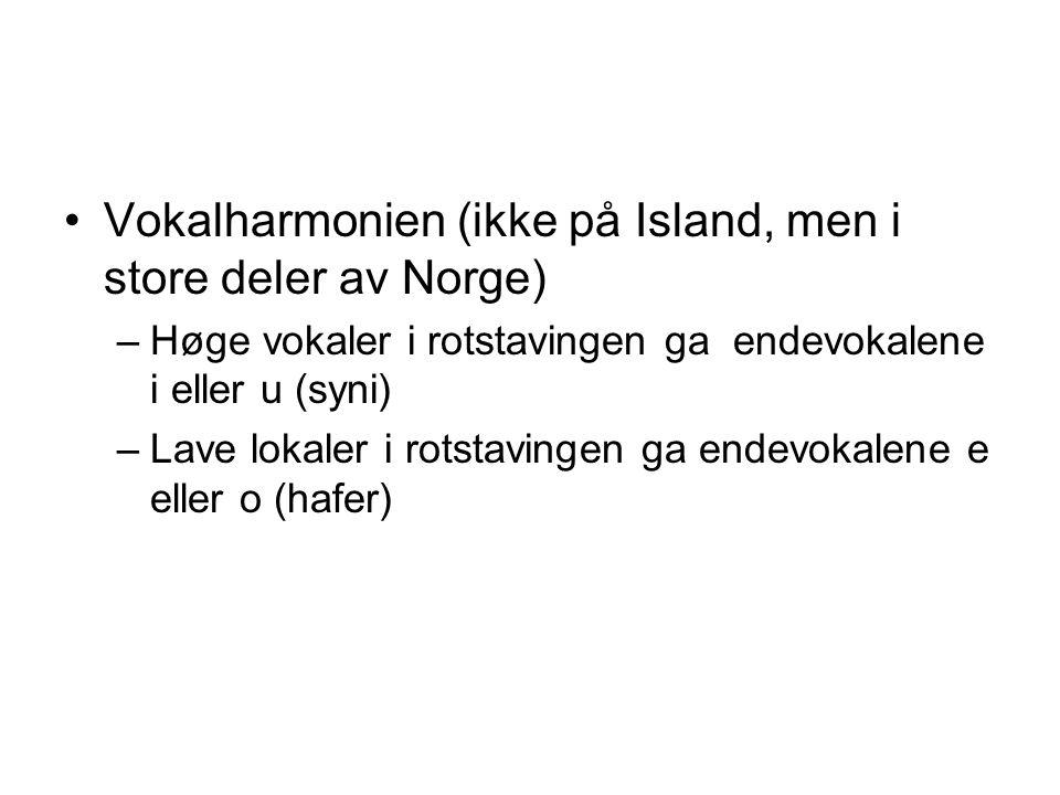 Vokalharmonien (ikke på Island, men i store deler av Norge) –Høge vokaler i rotstavingen ga endevokalene i eller u (syni) –Lave lokaler i rotstavingen ga endevokalene e eller o (hafer)