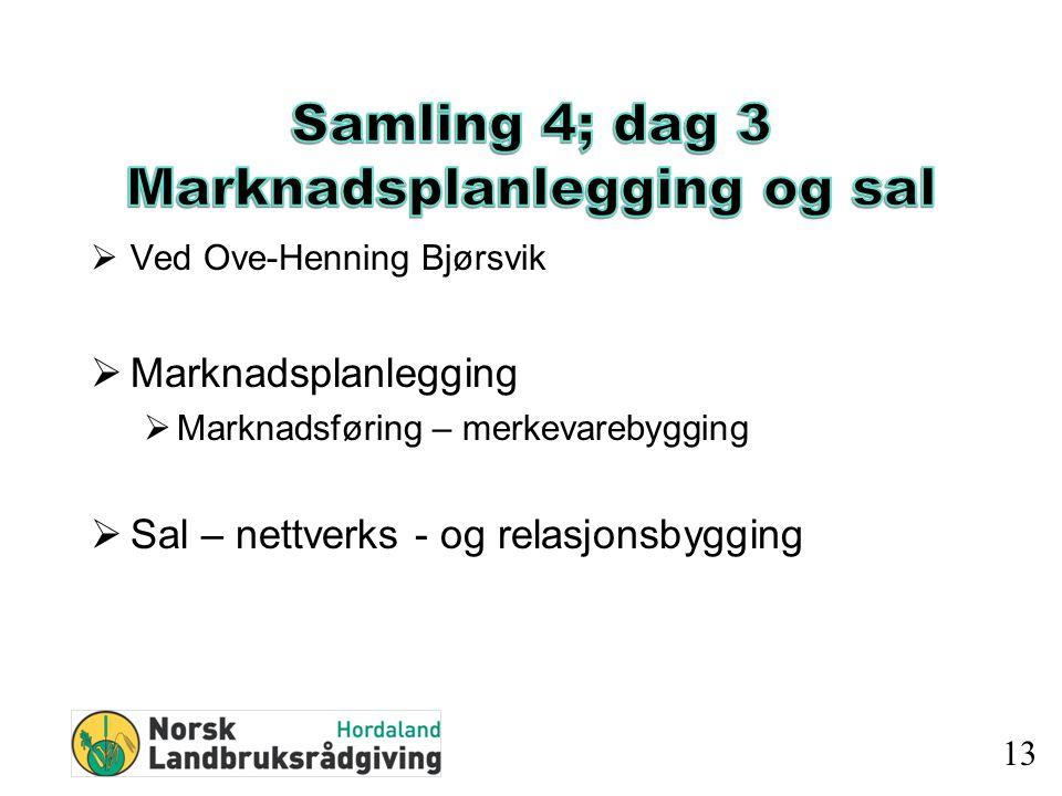  Ved Ove-Henning Bjørsvik  Marknadsplanlegging  Marknadsføring – merkevarebygging  Sal – nettverks - og relasjonsbygging 13