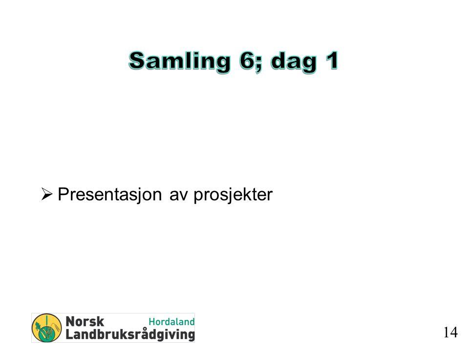  Presentasjon av prosjekter 14