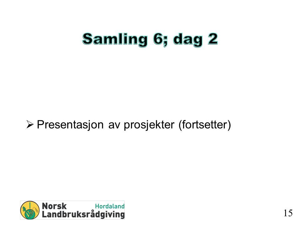  Presentasjon av prosjekter (fortsetter) 15