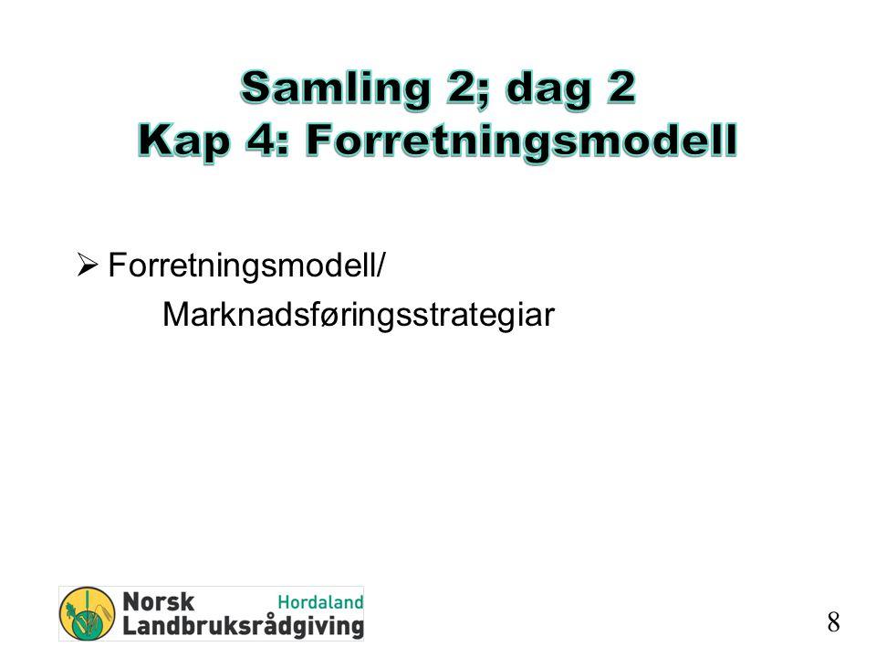  Forretningsmodell/ Marknadsføringsstrategiar 8