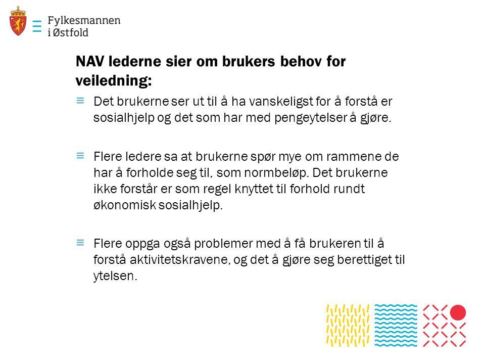 NAV lederne sier om brukers behov for veiledning: ≡ Det brukerne ser ut til å ha vanskeligst for å forstå er sosialhjelp og det som har med pengeytelser å gjøre.