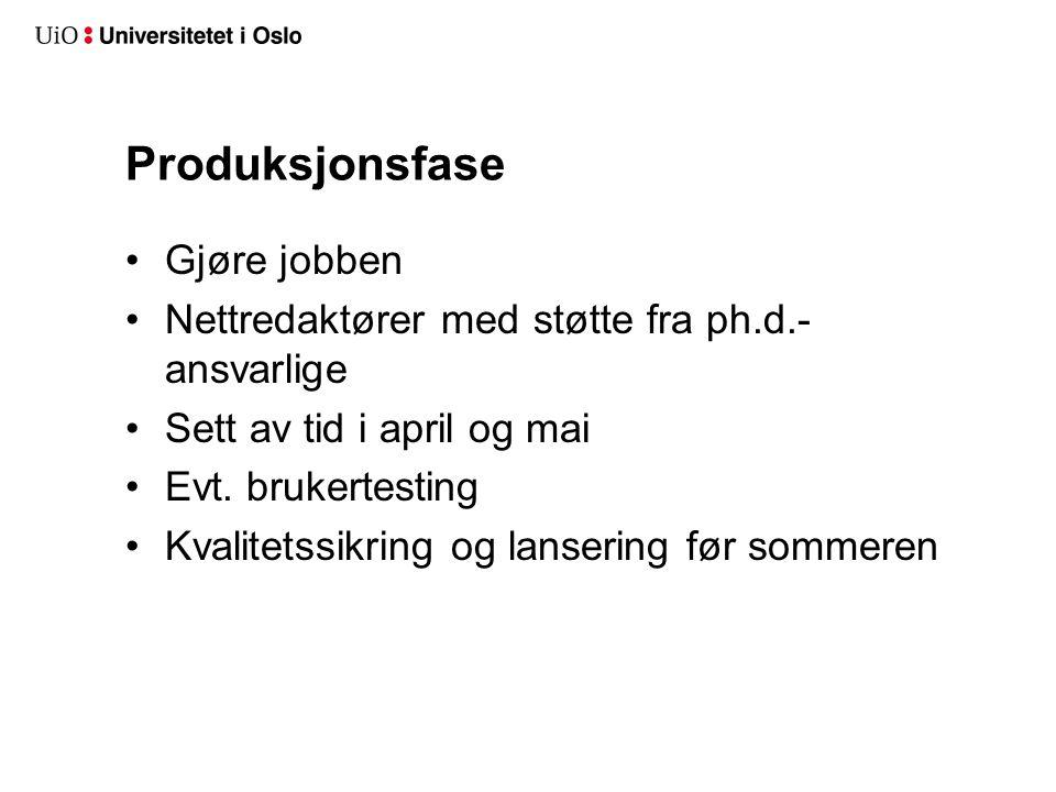 Produksjonsfase Gjøre jobben Nettredaktører med støtte fra ph.d.- ansvarlige Sett av tid i april og mai Evt.