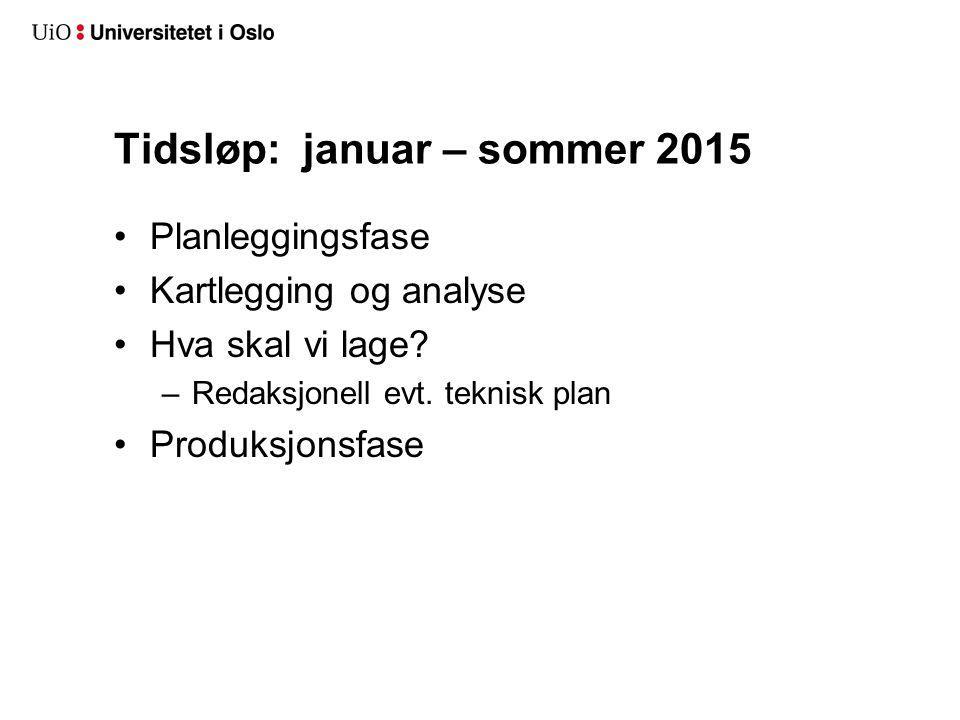 Tidsløp: januar – sommer 2015 Planleggingsfase Kartlegging og analyse Hva skal vi lage.