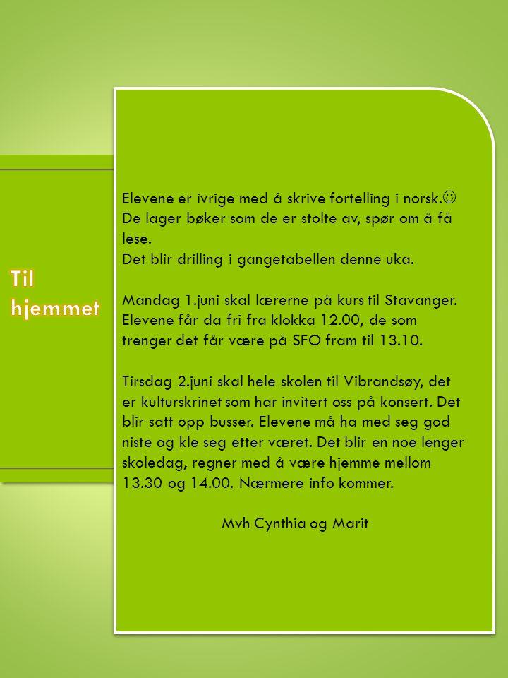 Elevene er ivrige med å skrive fortelling i norsk.