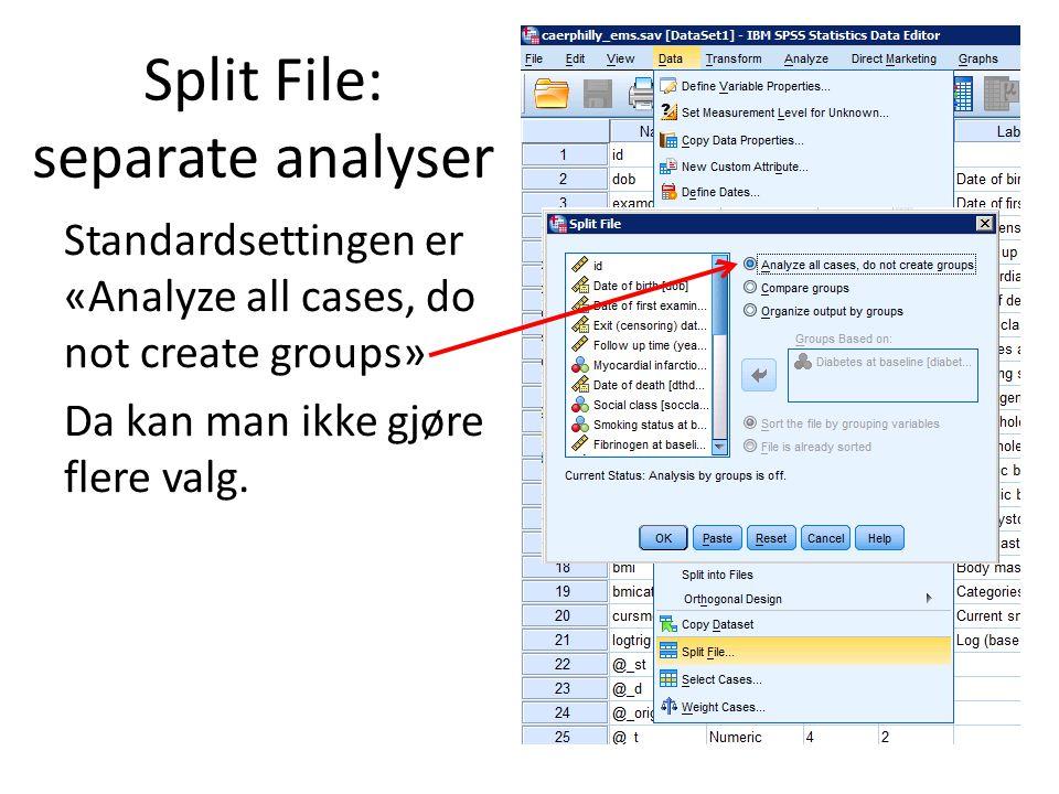 Split File: separate analyser Standardsettingen er «Analyze all cases, do not create groups» Da kan man ikke gjøre flere valg.