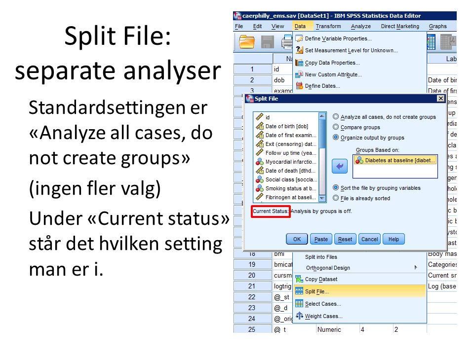 Split File: separate analyser Standardsettingen er «Analyze all cases, do not create groups» (ingen fler valg) Under «Current status» står det hvilken setting man er i.