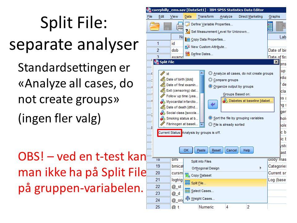 Split File: separate analyser Standardsettingen er «Analyze all cases, do not create groups» (ingen fler valg) OBS.