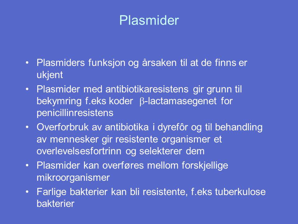 Plasmider Plasmiders funksjon og årsaken til at de finns er ukjent Plasmider med antibiotikaresistens gir grunn til bekymring f.eks koder  -lactamase