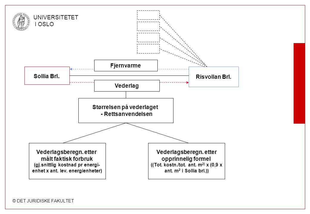 © DET JURIDISKE FAKULTET UNIVERSITETET I OSLO 1.3 Det videre opplegg –Analyse –Vurdering –Drøftelse av dommens rekkevidde