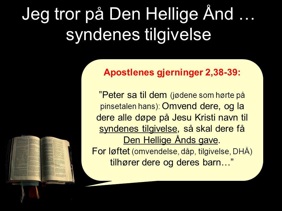Jeg tror på Den Hellige Ånd … syndenes tilgivelse Apostlenes gjerninger 2,38-39: Peter sa til dem (jødene som hørte på pinsetalen hans): Omvend dere, og la dere alle døpe på Jesu Kristi navn til syndenes tilgivelse, så skal dere få Den Hellige Ånds gave.
