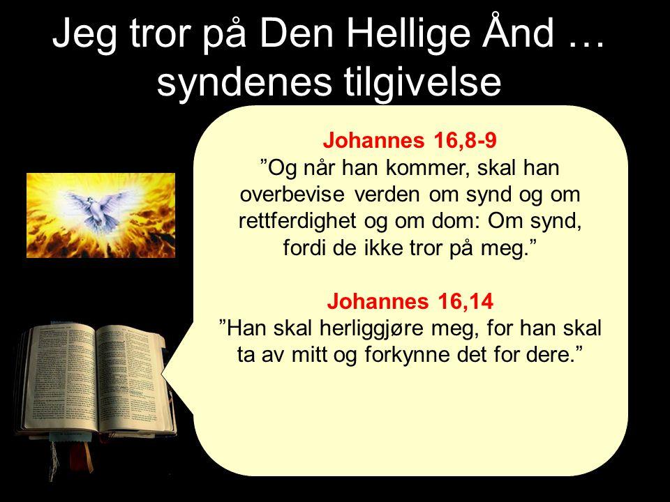 Jeg tror på Den Hellige Ånd … syndenes tilgivelse Johannes 16,8-9 Og når han kommer, skal han overbevise verden om synd og om rettferdighet og om dom: Om synd, fordi de ikke tror på meg. Johannes 16,14 Han skal herliggjøre meg, for han skal ta av mitt og forkynne det for dere.