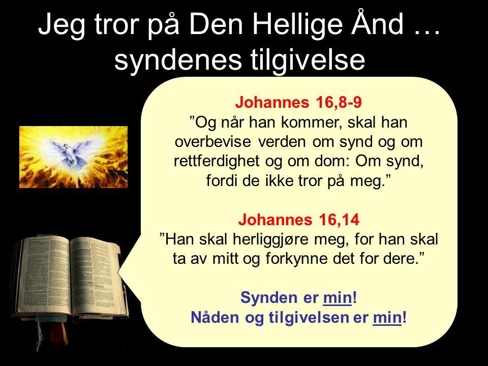 Jeg tror på Den Hellige Ånd … syndenes tilgivelse Johannes 16,8-9 Og når han kommer, skal han overbevise verden om synd og om rettferdighet og om dom: Om synd, fordi de ikke tror på meg. Johannes 16,14 Han skal herliggjøre meg, for han skal ta av mitt og forkynne det for dere. Synden er min.