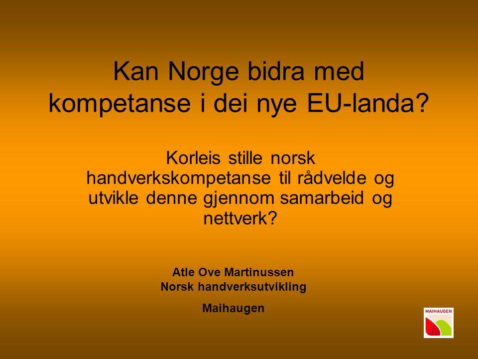 Kan Norge bidra med kompetanse i dei nye EU-landa? Korleis stille norsk handverkskompetanse til rådvelde og utvikle denne gjennom samarbeid og nettver