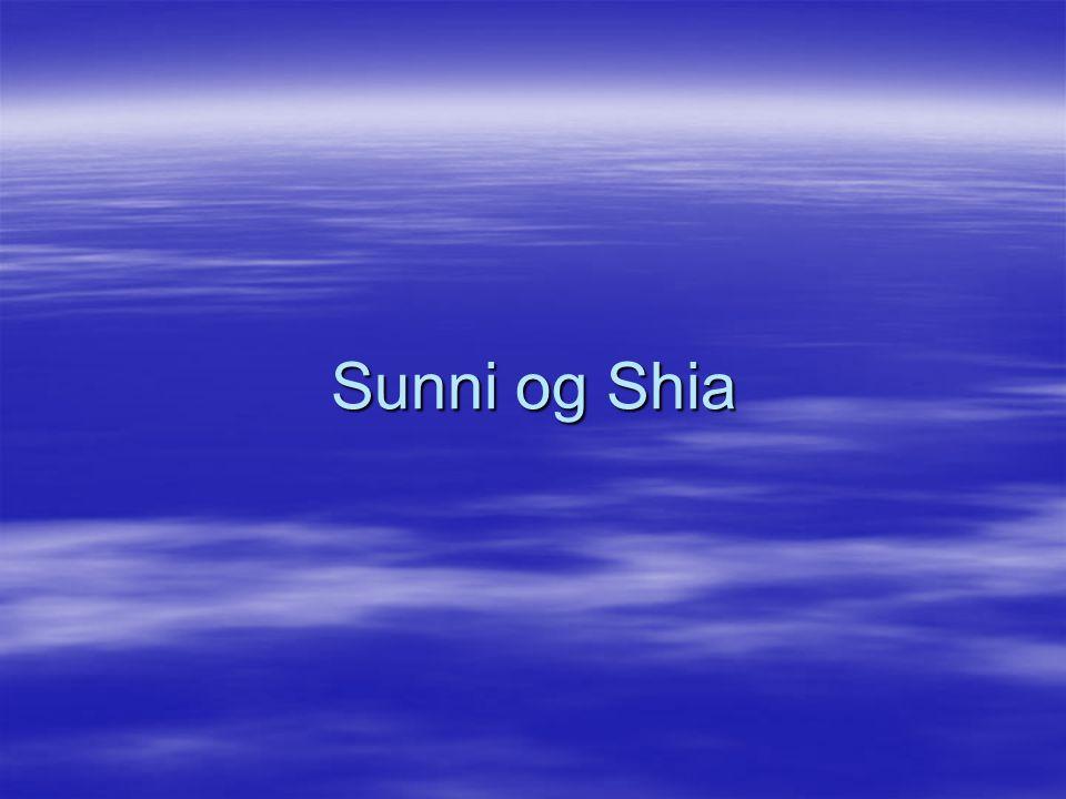 Sunni og Shia