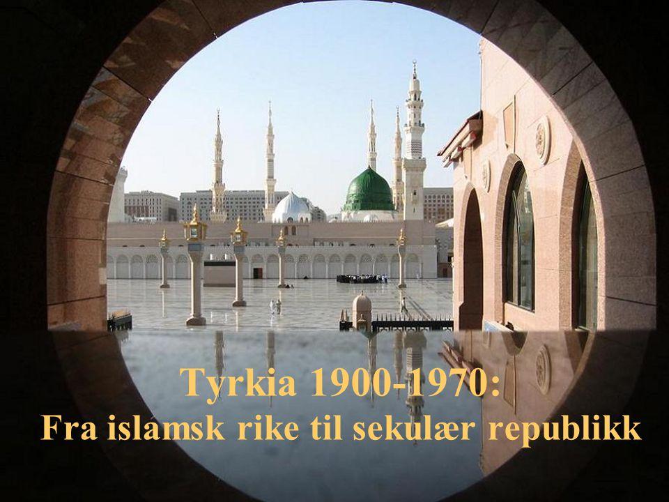 Det hamidiske despoti 1877-1908 Grunnloven avskaffet 1876 autoritært styre Sterk betoning av rikets islamske identitet og sultanen som kalif Fortsatt modernisering av administrasjon og økonomi, utbygging av kommunikasjoner Abdülhamit II Sultan 1876-1908
