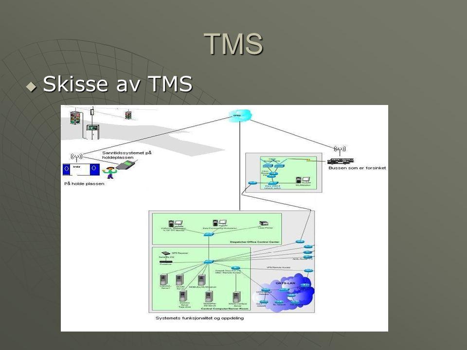 TMS  Skisse av TMS