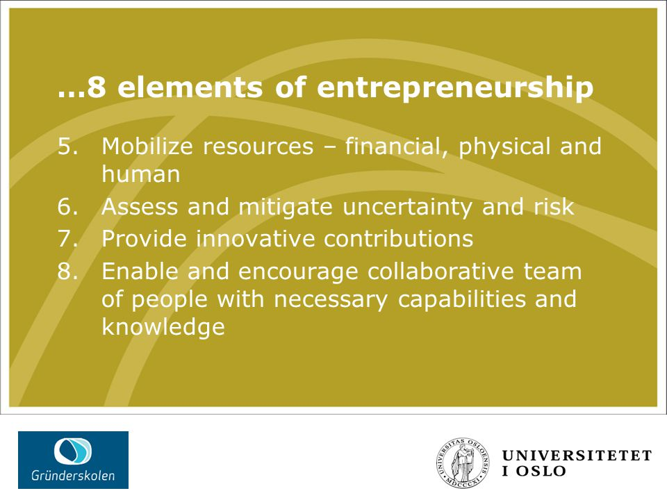 …8 elements of entrepreneurship 5. Mobilize resources – financial, physical and human 6.Assess and mitigate uncertainty and risk 7.Provide innovative
