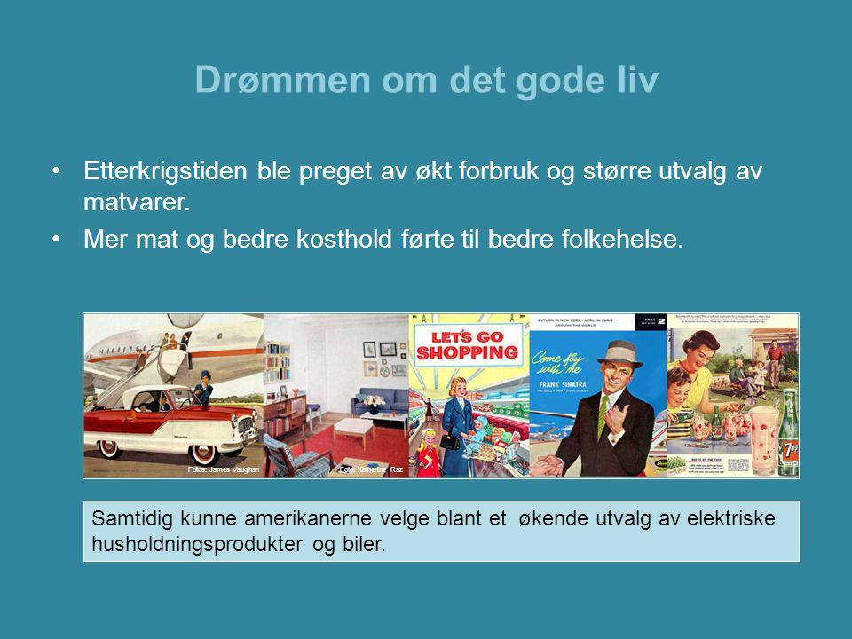 Drømmen om det gode liv •1950-årenes kvinneideal var den hjemmeværende husmoren.