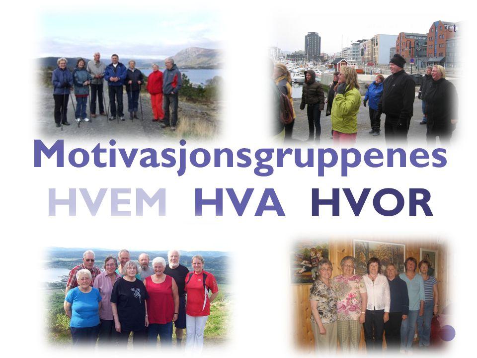 HVA er motivasjonsgruppene og HVEM er de for.
