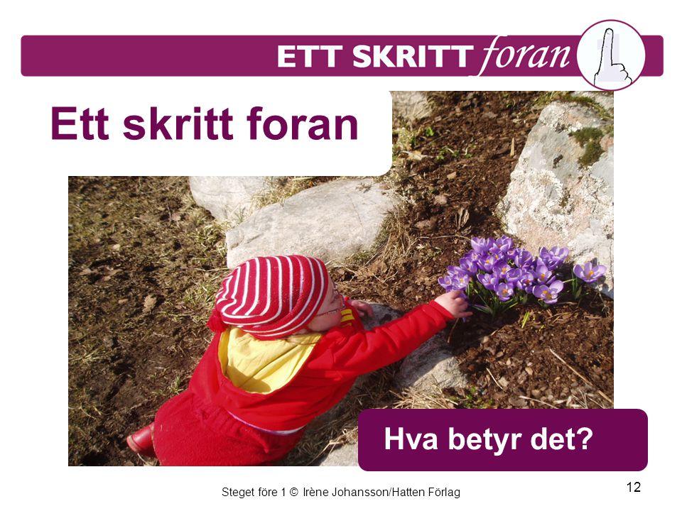 Steget före 1 © Irène Johansson/Hatten Förlag 12 Ett skritt foran Hva betyr det
