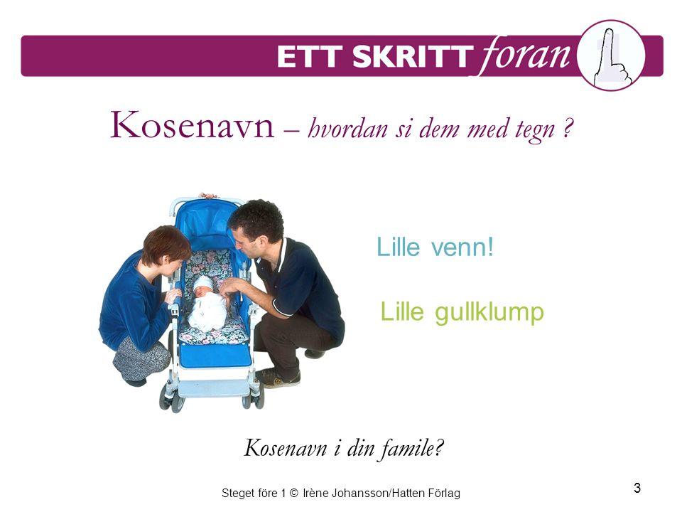 Steget före 1 © Irène Johansson/Hatten Förlag 4 Om barnets følelser – hvordan sier vi det med tegn.