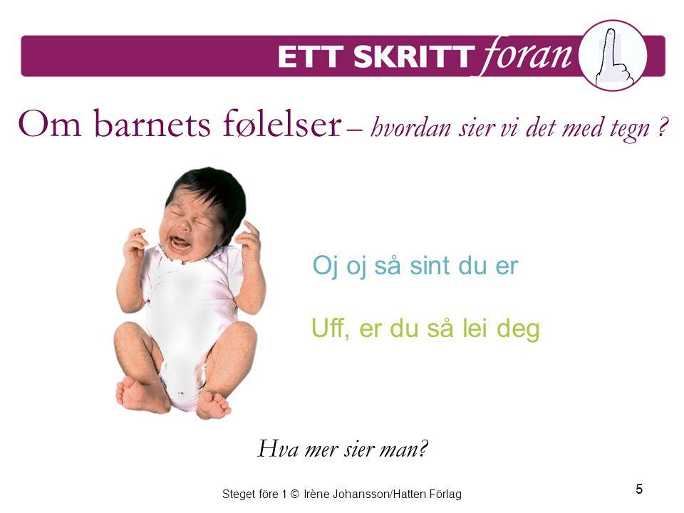 Steget före 1 © Irène Johansson/Hatten Förlag 5 Om barnets følelser – hvordan sier vi det med tegn ? Oj oj så sint du er Uff, er du så lei deg Hva mer
