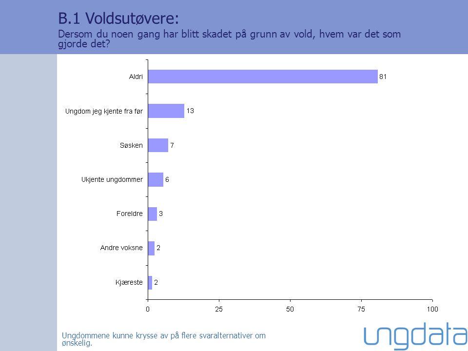 B.1 Voldsutøvere: Dersom du noen gang har blitt skadet på grunn av vold, hvem var det som gjorde det.