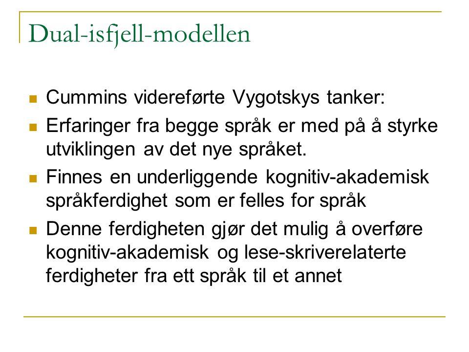 Dual-isfjell-modellen  Cummins videreførte Vygotskys tanker:  Erfaringer fra begge språk er med på å styrke utviklingen av det nye språket.  Finnes