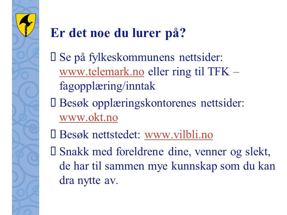 Er det noe du lurer på?  Se på fylkeskommunens nettsider: www.telemark.no eller ring til TFK – fagopplæring/inntak www.telemark.no  Besøk opplærings