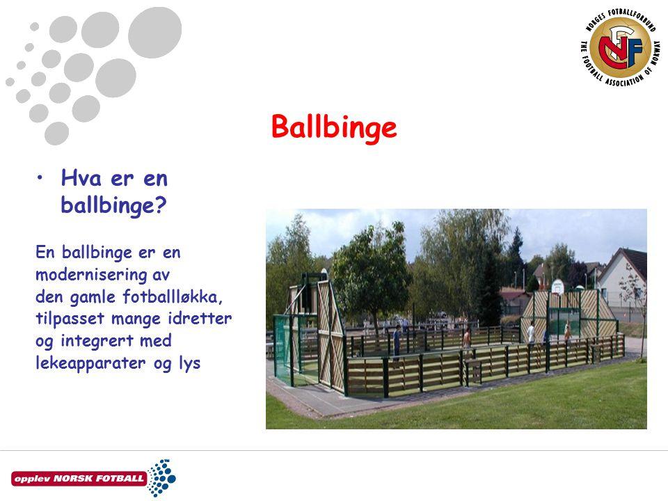 Ballbinge •Hva er en ballbinge? En ballbinge er en modernisering av den gamle fotballløkka, tilpasset mange idretter og integrert med lekeapparater og