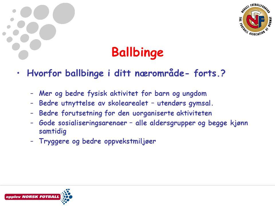Ballbinge •Hvorfor ballbinge i ditt nærområde- forts.? –Mer og bedre fysisk aktivitet for barn og ungdom –Bedre utnyttelse av skolearealet – utendørs