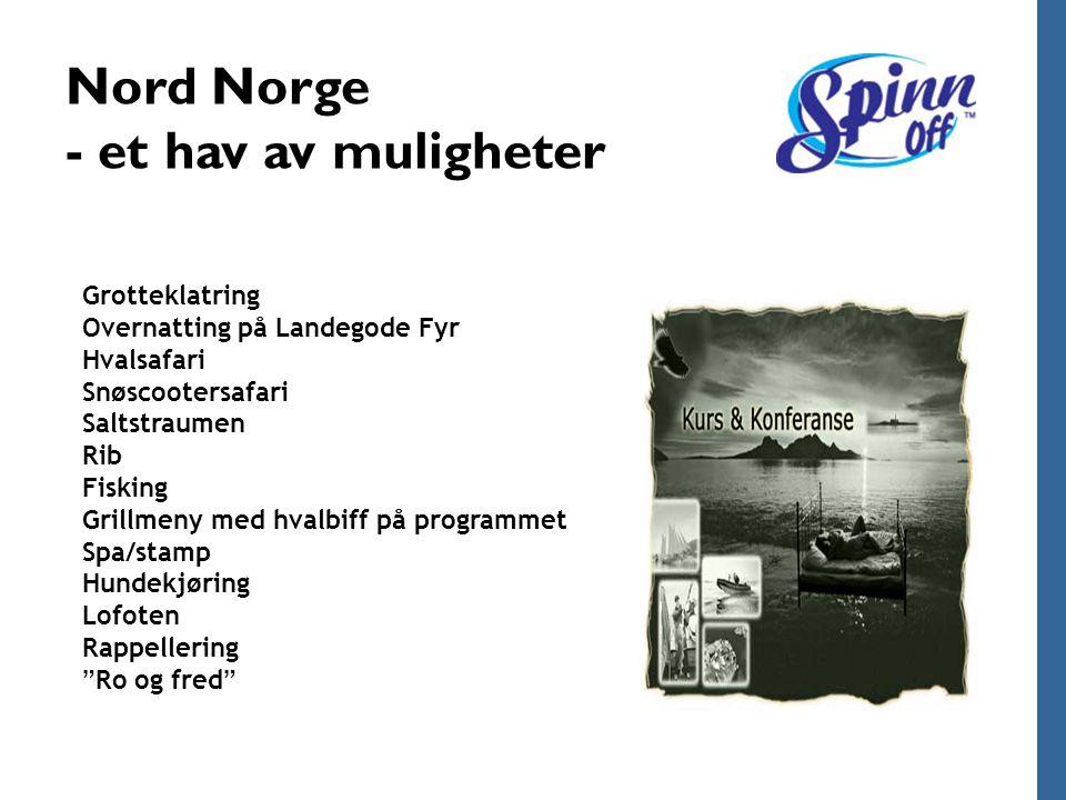 Nord Norge - et hav av muligheter Grotteklatring Overnatting på Landegode Fyr Hvalsafari Snøscootersafari Saltstraumen Rib Fisking Grillmeny med hvalb