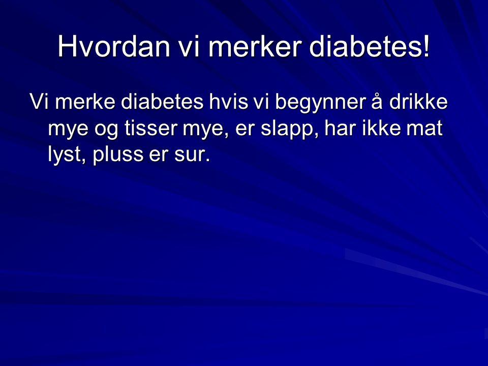 Hvordan vi merker diabetes! Vi merke diabetes hvis vi begynner å drikke mye og tisser mye, er slapp, har ikke mat lyst, pluss er sur.