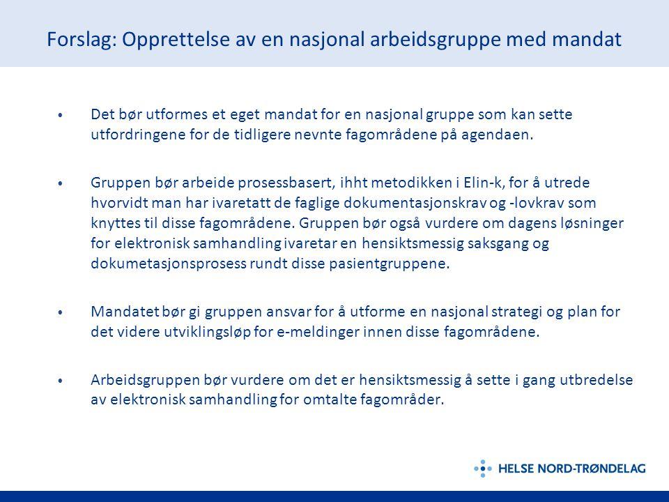 Forslag: Opprettelse av en nasjonal arbeidsgruppe med mandat • Det bør utformes et eget mandat for en nasjonal gruppe som kan sette utfordringene for de tidligere nevnte fagområdene på agendaen.