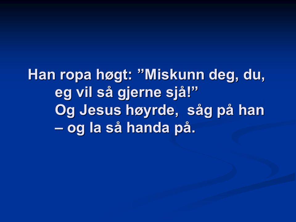 """Han ropa høgt: """"Miskunn deg, du, eg vil så gjerne sjå!"""" Og Jesus høyrde, såg på han – og la så handa på."""