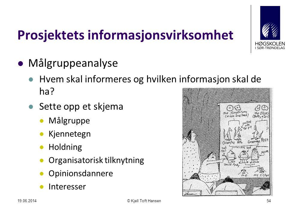 Prosjektets informasjonsvirksomhet  Målgruppeanalyse  Hvem skal informeres og hvilken informasjon skal de ha?  Sette opp et skjema  Målgruppe  Kj