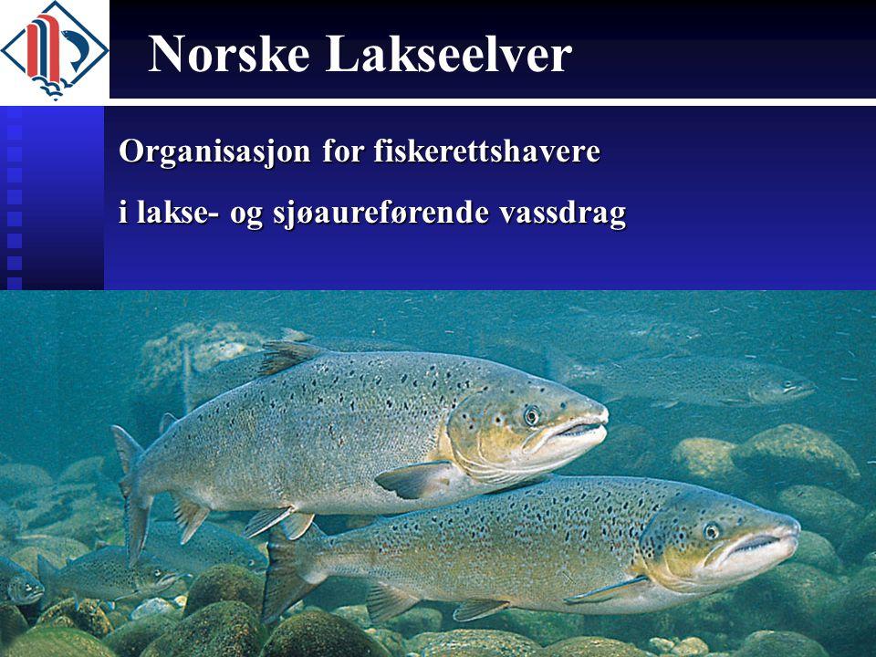 Organisasjon for fiskerettshavere i lakse- og sjøaureførende vassdrag Norske Lakseelver
