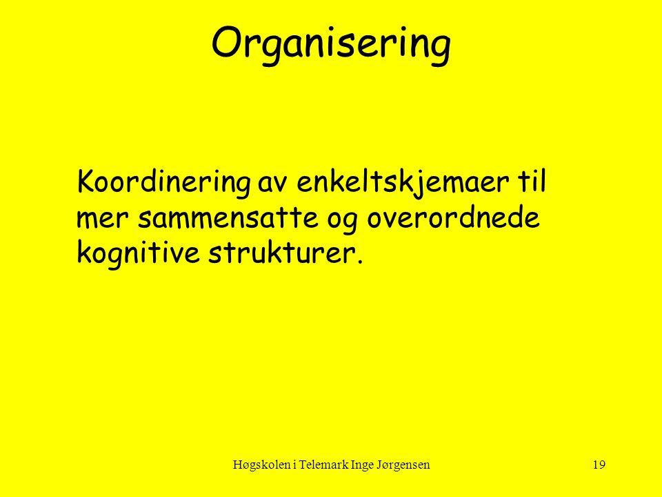 Høgskolen i Telemark Inge Jørgensen19 Koordinering av enkeltskjemaer til mer sammensatte og overordnede kognitive strukturer. Organisering
