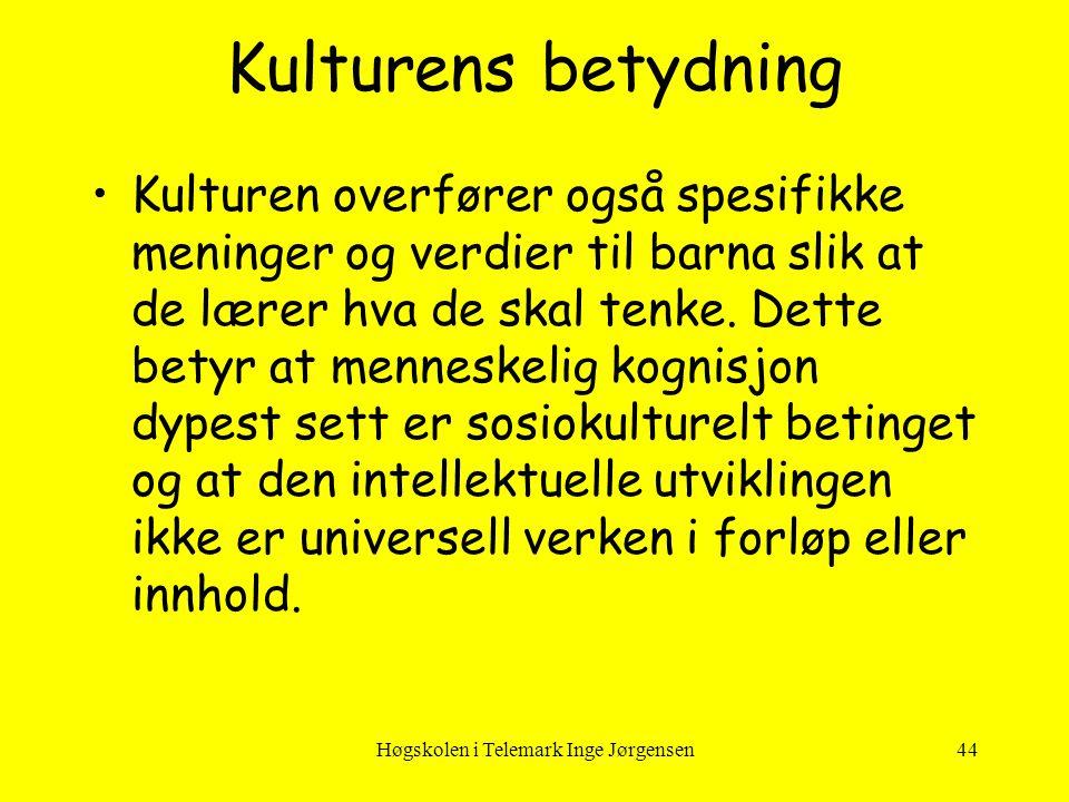 Høgskolen i Telemark Inge Jørgensen44 Kulturens betydning •Kulturen overfører også spesifikke meninger og verdier til barna slik at de lærer hva de sk
