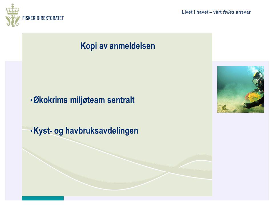 Livet i havet – vårt felles ansvar Kopi av anmeldelsen • Økokrims miljøteam sentralt • Kyst- og havbruksavdelingen