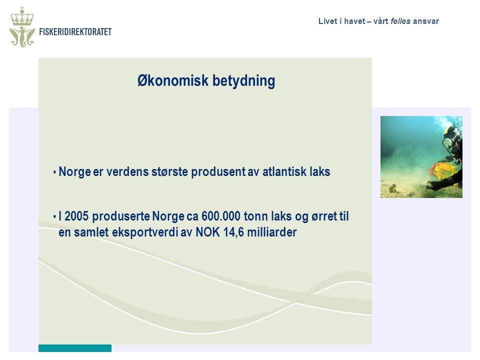 Livet i havet – vårt felles ansvar Økonomisk betydning • Norge er verdens største produsent av atlantisk laks • I 2005 produserte Norge ca 600.000 ton